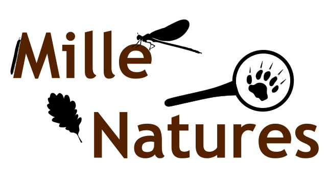 Logo Mille Natures
