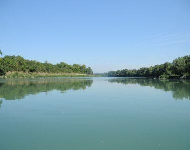 Rhône naturel et ses berges