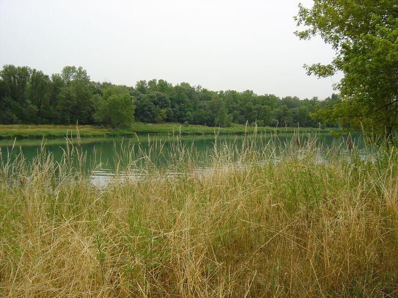 Zone de prairie à Millery