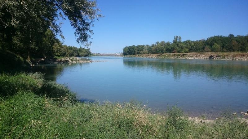 Rhône au niveau du Vieux Port