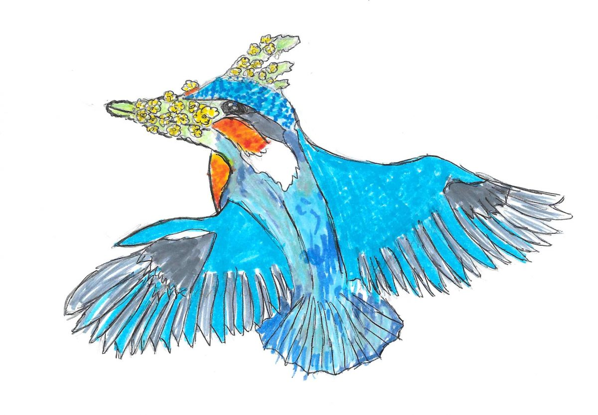 L'Aigremoirtin pêcheur, une créature imaginée par les élèves